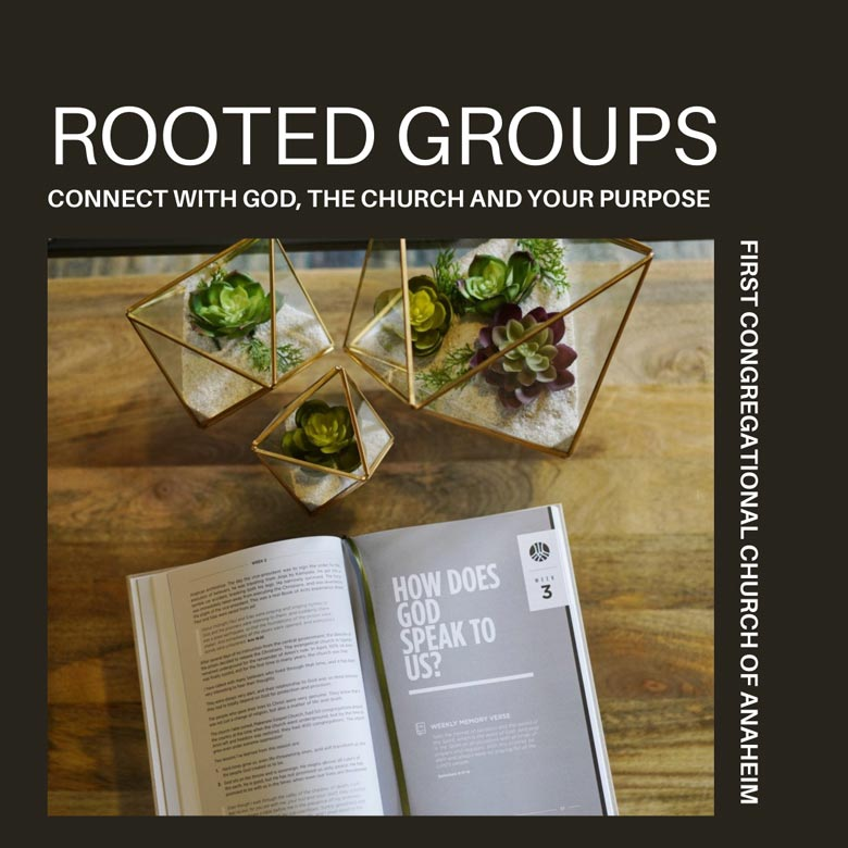 Rooted Small Groups Tuesdays
